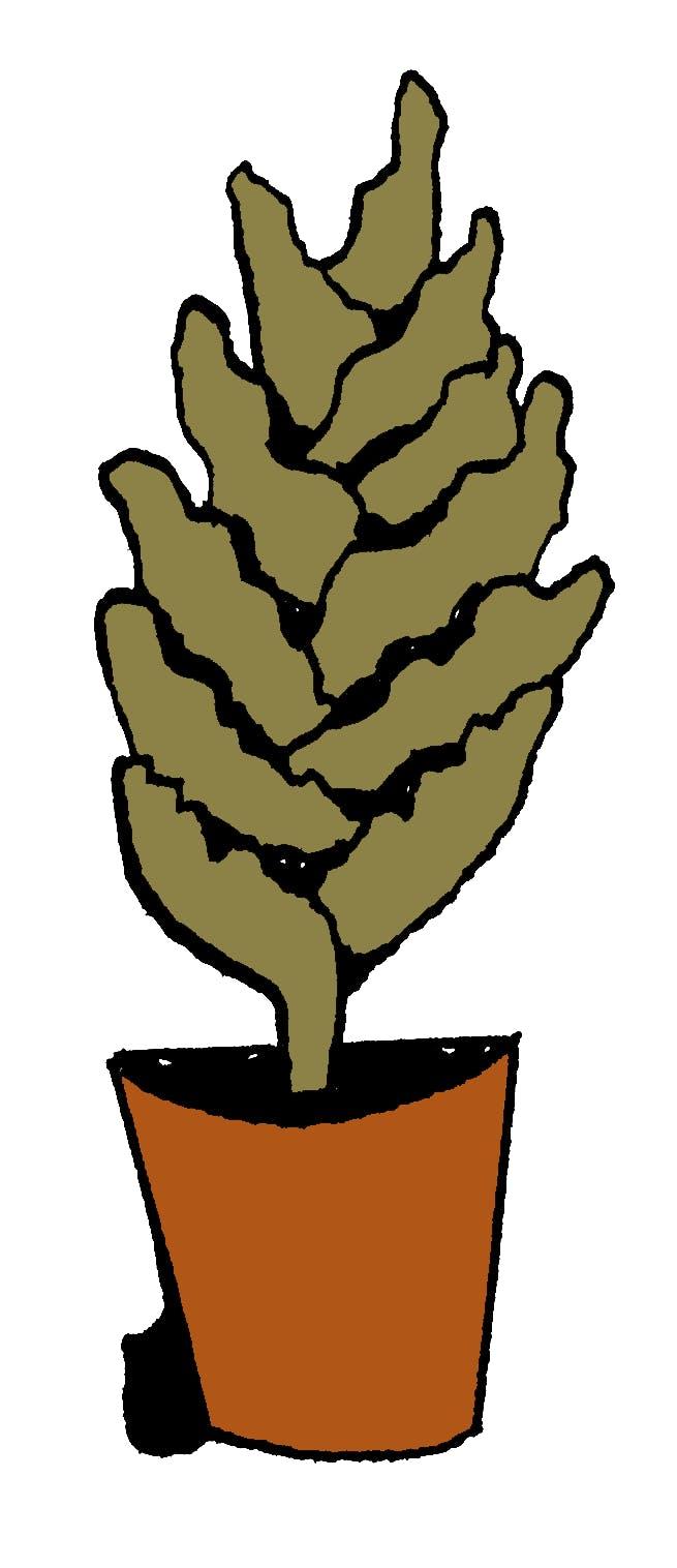 Pflanze Frei 03
