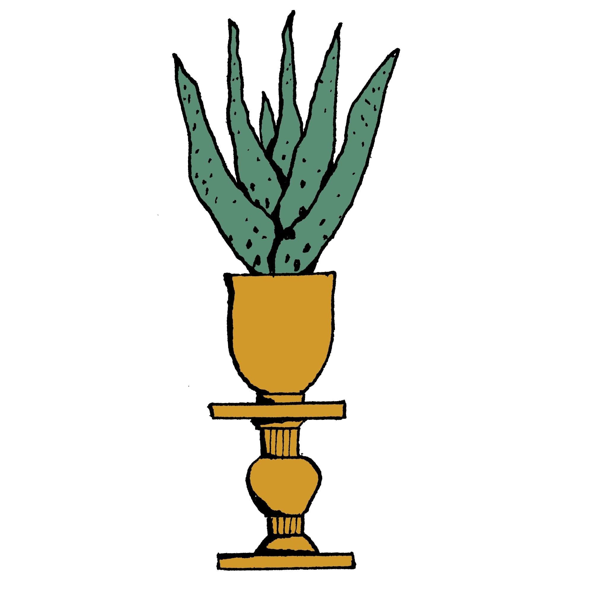 Pflanze Frei 02