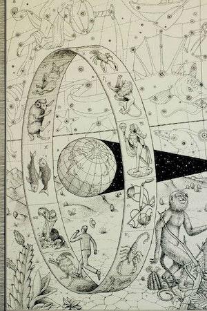 Como Leer Tu Horoscopo Rueda